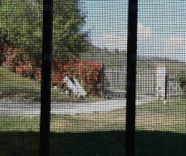 moskitiera w oknie